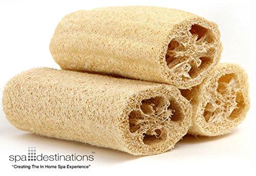 Natural Loofah Sponge (Natural Loofah Exfoliating Bath Sponge by Spa Destinations (3 PACK of 6