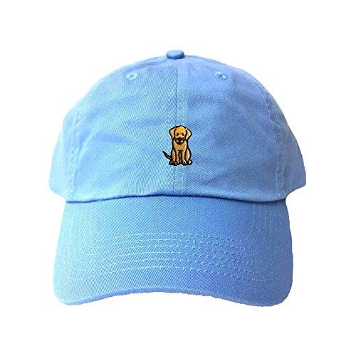 (Go All Out Adjustable Sky Blue Adult Dog Embroidered Dad Hat)