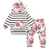 Toddler Baby Girls Floral Hooded Top + Pants Outfits Set Kids Clothes (12-18M, Floral)