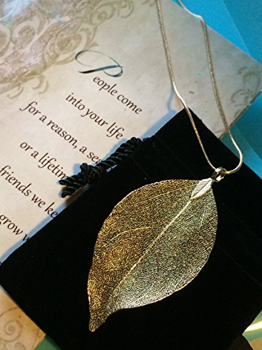Smiling Wisdom -Gold Real Leaf Friendship Necklace Gift Set - Reason Season Lifetime Friendship Greeting Card - Long Sweater Leaf Statement Necklace - For Her, Awesome Best Friend – Gold ()