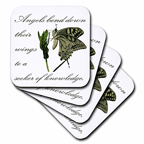 3dRose Taiche - Greeting Card - Angels - Angels Bend Down Their Wings To A Seeker Of Knowledge - set of 8 Coasters - Soft (cst_275665_2) -
