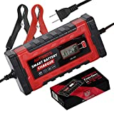 Autobots EnerGen Smart Battery Charger | Fully Automatic 12v & 24v Battery Tender