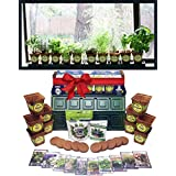 Windowsill Herb Garden Kit, Indoor Window Box Herb Garden Kit Complete with a 10 Variety Non GMO Heirloom Herb Seed Collection