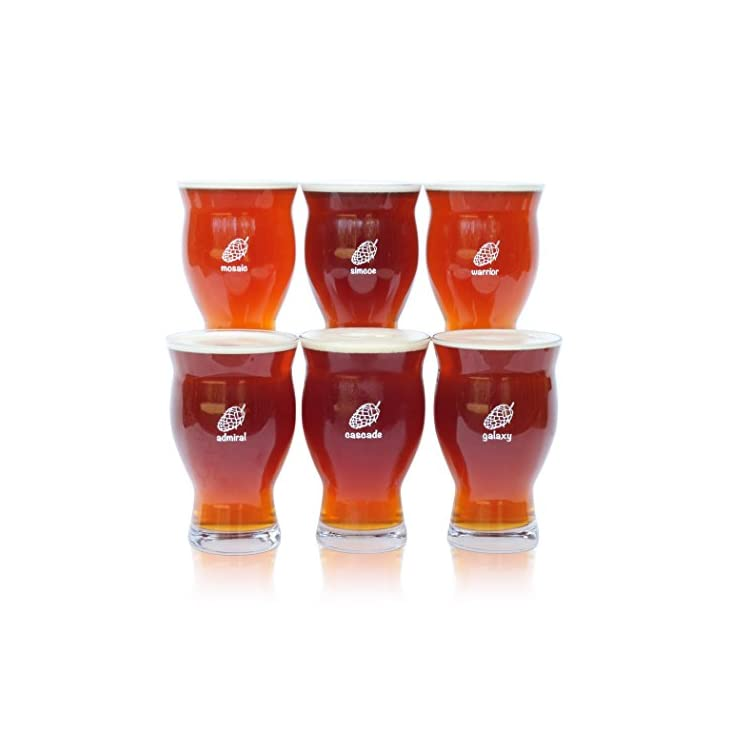 Six (6) Pack of Ultimate Pint Glasses – 6 Individually Labeled Glasses Perfect for a Party