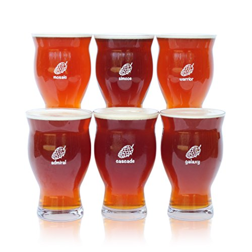 Six (6) Pack of Ultimate Pint Glasses - 6 Individually Labeled Glasses Perfect for a Party (Giant Wine Glass Cooler)