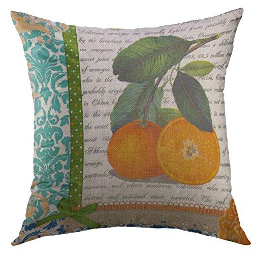 Mugod Decorative Throw Pillow Cover Green Oranges Vintage Florida Orange Fruit Blue Citrus Home Decor Pillow Case 18x18 Inch
