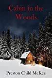 Cabin in the Woods: The Establishment (A Suspense Mystery Thriller Short Story (  Book 1 )