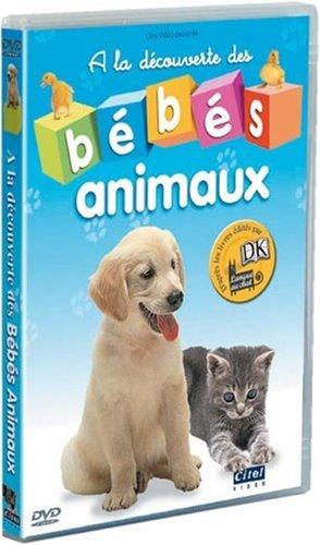 Amazon Com A La Découverte Des Bébé Animaux Movies Tv