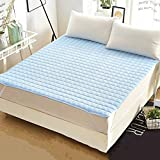YQ WHJB Thin Mattress Pads,Foldable Mattress-Toppers,Non-Slip Polyester Hotel Soft Single Double Washable Mattress Protector-Blue 90x200cm(35x79inch)