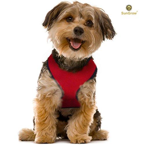 Radia (Matching Dog Costumes)