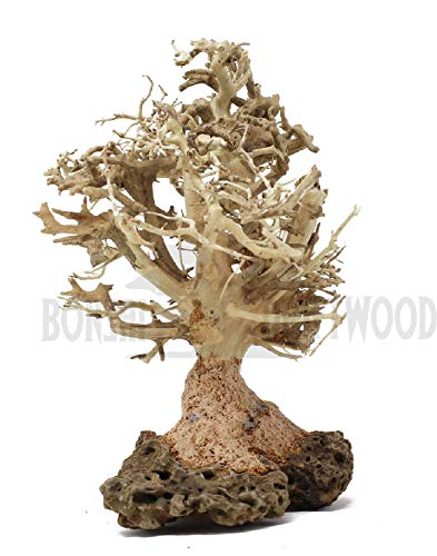 - Bonsai Driftwood Aquarium Tree (7 Inch Height) Natural, Handcrafted Fish Tank Decoration | Helps Balance Water pH Levels, Stabilizes Environments | Easy to Install | BBS