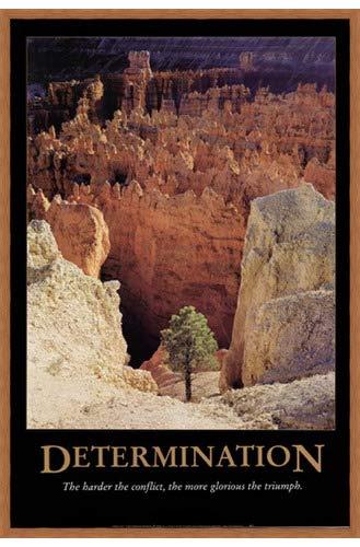 Determination byロッドEdwards – 24 x 36インチ – アートプリントポスター 24 x 36 Inch LE_839646-F8744-24x36  Honey Pecan Frame B01NAH5DPQ