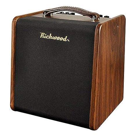 Richwood AC 50 · Amplificador guitarra acústica: Amazon.es ...