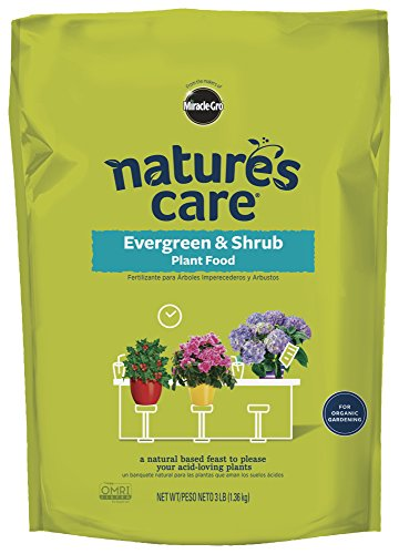 natures-care-100134-miracle-gro-natural-evergreen-and-shrub-plant-food