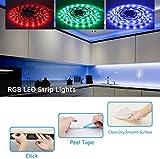 LED Strip Lights Rilitor 5050 32.8ft RGB LED Strips