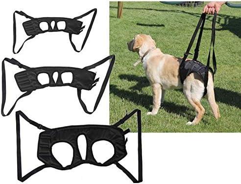 AZZAP Gehhilfe Hundegehilfe Stützgeschirr Hebehilfe Tragehilfe Geschirr hinte Größe: Größ