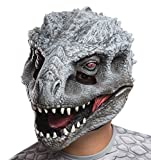 Rubie's Costume Co – Jurassic World Child Dino #2 3/4 Mask