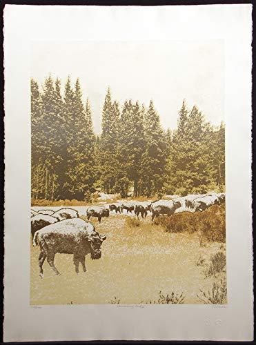 Vanishing Herd #2