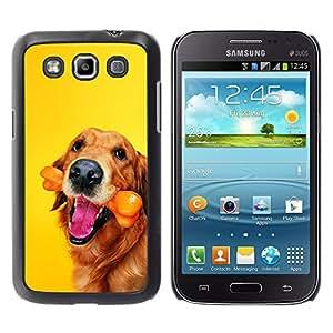 Vortex Accessory Hard Protective Case Skin Cover For Samsung Galaxy Win ( I8550 / I8552 ) - Golden Labrador Retriever Chocolate Dog