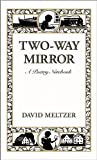 Image of Two-Way Mirror: A Poetry Notebook