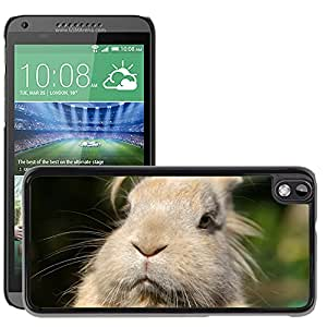 Etui Housse Coque de Protection Cover Rigide pour // M00114420 Retrato Animal Conejo pensativo // HTC Desire 816