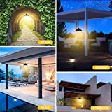 Solar Lights,LOZAYI Outdoor Solar Lights,IP65
