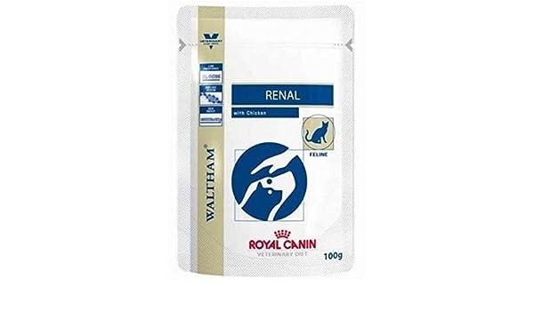 ROYAL CANIN Renal gato del sobre Wet Cat Food dietas de pollo: Amazon.es: Productos para mascotas