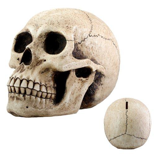 Skull Head Money Bank Display Decoration ()