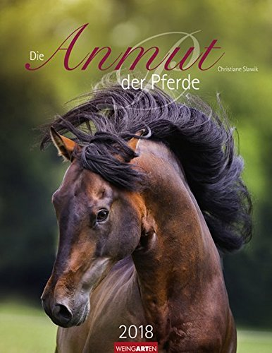 Die Anmut der Pferde - Kalender 2018