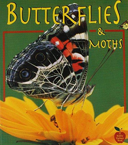Butterflies and Moths (Crabapples)