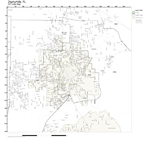 Amazoncom zip code wall map of zephyrhills fl zip code for Home furniture zephyrhills fl