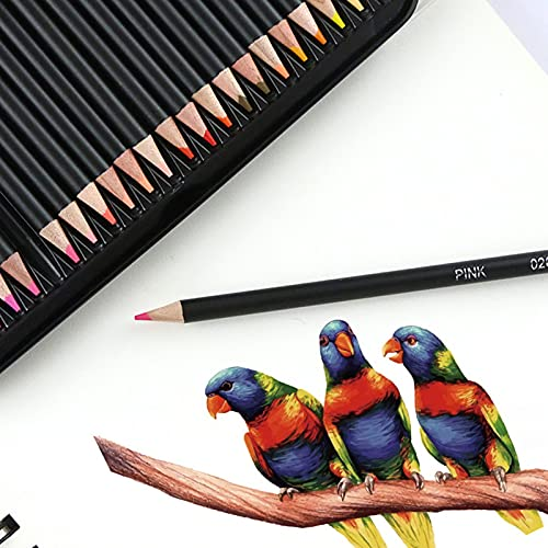 Colored Coloring Pencils for Adult Coloring, Drawing Pencils Set of 72 Professional & Premium Soft Wax-Based Cores Art Pencil Set for Drawing Sketching Shading, Ideal Gift for Adults Artists Beginners
