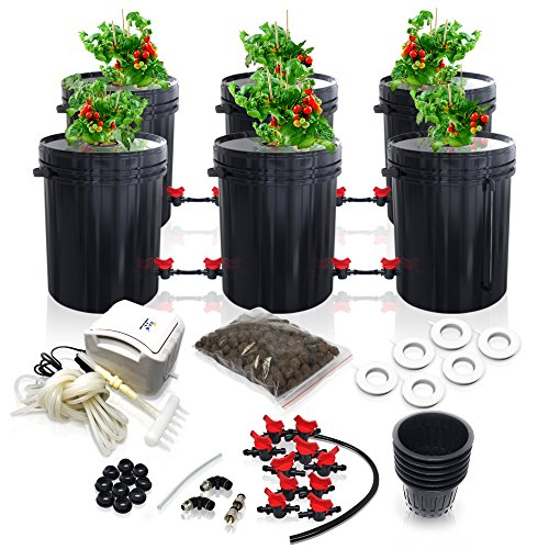 - SavvyGrow DWC Hydroponics Growing System-Kit - Large 5 Gallon 6 Buckets w/Air Pump Airstone - Complete Hydroponic Setup for Indoor Tomatoes, Peppers, Melons, Bean - Grow Super Fast at Home (6 Bucket)