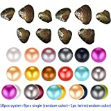HENGSHENG 10PCS of Mix Colors Single and Twins 6-7 mm Freshwater Nearly Round Freshwater Cultured Pearl Oyster
