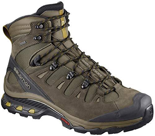 SALOMON Men's Quest 4D 3 GTX Backpacking Boots, Wren/Bungee Cord/Green Sulphur, 8.5 M US