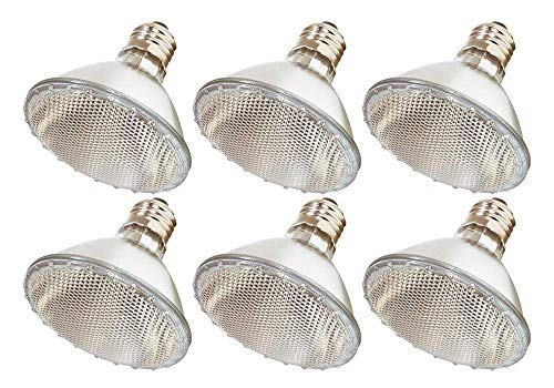 Par30 Halogen Light Bulbs, 6 Pack 60 Watt (75w Replacement), 1100 Lumens E26 Base, Long Lasting Life High Output Reflector Flood Lights for Indoor/Outdoor Use - Warm White