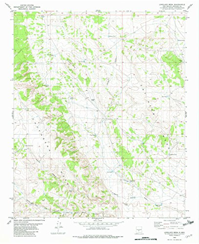 Lovelace Mesa NM topo map, 1:24000 scale, 7.5 X 7.5 Minute, Historical, 1982, updated 1982, 27 x 22 IN - (Lovelace Top)