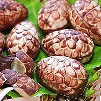 SEEGOU Molde para Pasteles de Huevo de Pascua en 3D, Forma de ...