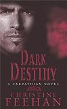 Dark Destiny: Number 13 in series (Dark Series)