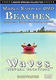 Waves Sampler DVD Beaches: Caribbean, California, Florida, Hawaii