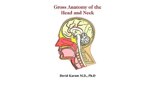 Gross Anatomy Of The Head And Neck David Karam Md Phd