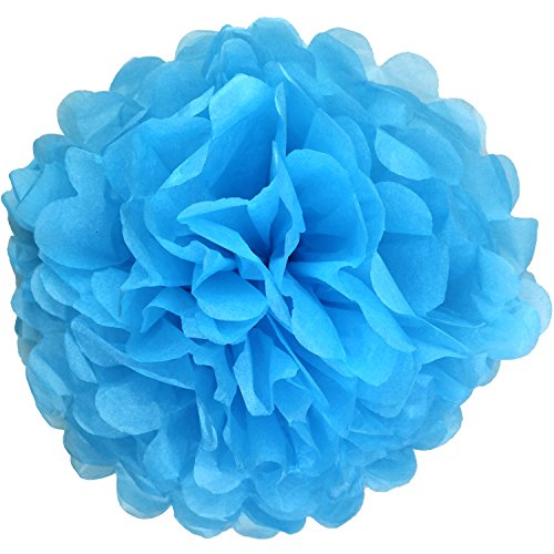 Lightingsky 10pcs DIY Decorative Tissue Paper Pom-poms Flowers Ball Perfect for Party Wedding Home Outdoor Decoration (10-inch Diameter, Blue 2)