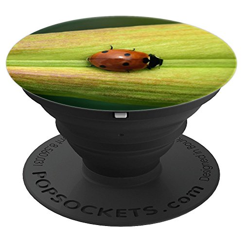 Adorable Ladybug on a Leaf Nature Insect Bug - PopSockets Grip and Stand for Phones and (Adorable Ladybug)