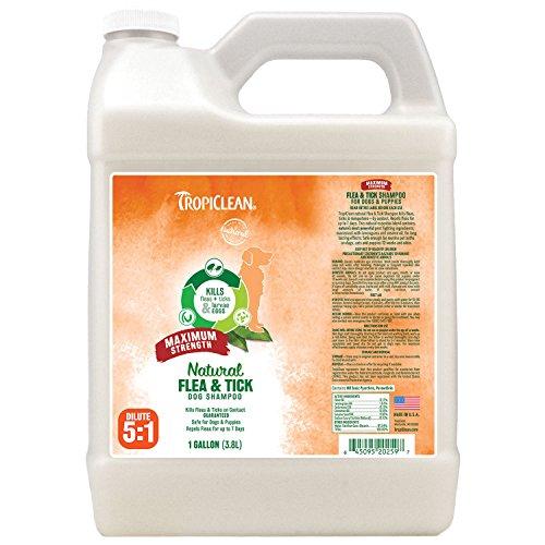 51S2OK64ufL - Tropiclean Natural Flea and Tick Shampoo for Pets