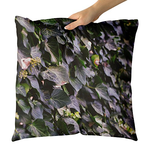 Westlake Art - Nature Wallpaper - Decorative Throw Pillow Cushion - Picture Photography Artwork Home Decor Living Room - 18x18 Inch (D72D3) (Botanical Wallpaper Vine)