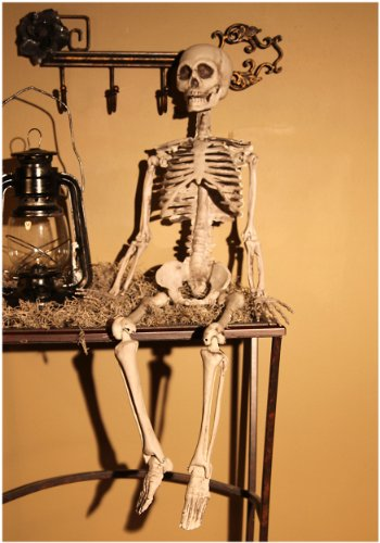 Plastic Realistic Skeleton - ST