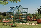Palram Nature Harmony Greenhouse, 6′ wide x 8′ long For Sale