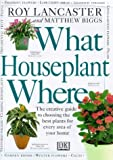 What Houseplant Where