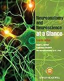 Neuroanatomy and Neuroscience at a Glance 4e