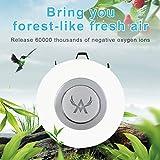 Mini Personal Air Purifier Wearable Air Purifier